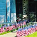 Flags Along The Walkway by Don Baker
