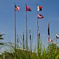 Flags Flags Flags by Douglas Barnett