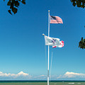 Flags On The Shoreline by Lou Cardinale
