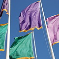 Flags by Rob Hans