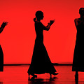 Flamenco Red An Black Spanish Passion For Dance And Rithm by Pedro Cardona Llambias