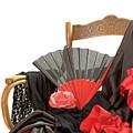 Flamenco Clothing  by Jaroslav Frank