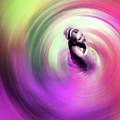 Flamenco Dance Art 675y by Gull G