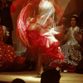 Flamenco Dancer In Seville by Carl Purcell