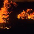 Flames At Dusk by Robert Potts