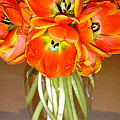 Flaming Tulips In A Vase by Lucyna A M Green
