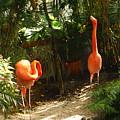 Flamingo Duo by Jacqueline Whitcomb