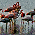 Flamingo Family by Galeria Trompiz