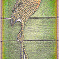 Flamingo II by Leslie Revels