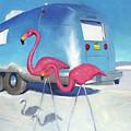 Flamingo Migration by Elizabeth Jose