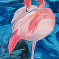 Flamingo  by Neal Smith-Willow