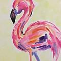 Flamingo by Noel Marie