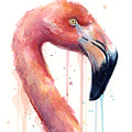 Flamingo Painting Watercolor - Facing Right by Olga Shvartsur