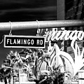 Flamingo Road Las Vegas by John Rizzuto