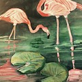 Flamingos  by Janet Easley