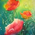 Flander's Poppies by Liz McQueen