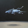 Floating Field Mouse by Jeffrey Bess