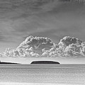Flat Holm And Steep Holm Mono by Steve Purnell