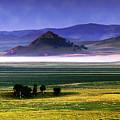 Flat Lands Of Kunming by Dot Xie