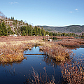 Flat Mountain Ponds - Sandwich Wilderness White Mountains Nh by Erin Paul Donovan
