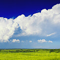 Flat Open Grassland And Sky by Nino Rasic