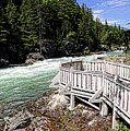 Flathead River Rapids by David Ross
