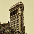 Flatiron Building In Sepia by Bill Cannon