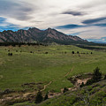 Flatirons From South Trails by Cary Leppert