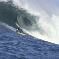 Flea On A Mavericks Giant by Stan and Anne Foster