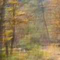 Fleeting Autumn by Denise Dethlefsen