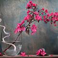 Fleur by Manfred Lutzius