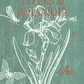 Fleurs De Botanique by Debbie DeWitt