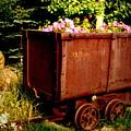 Fleurs In Rustic Ore Car by Christine S Zipps