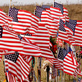 Flight 93 Flags by Jean Macaluso
