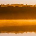 Flight At Dawn by Rikk Flohr