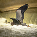 Flight Below The Falls by Steve Marler