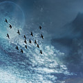 Flight Of Dreams by Anthony Robinson