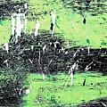 Flint Hill Special by Patti Schulze