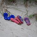 Flip Flops by Gene Lossman