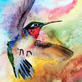 Da155 Flit Color By Daniel Adams by Daniel Adams