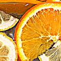 Floating Citrus by Brenda Michniewicz