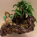 Floating Island Fairy by Tania Read
