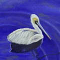 Floating Pelican by Sandra Fullerton
