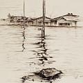 Flood St. by Sarah Lonthier