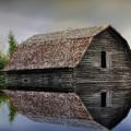 Flooded Barn by Teresa Zieba