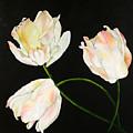 Flora Blanca 3  by Denise Lockhart Bush