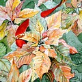 A Peachy Poinsettia by Mindy Newman