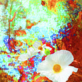 Flora by Yvonne Beatty