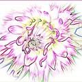 Floradoodle by Linda Galok