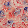 Floral Abstract by Catherine Sprague